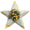 Star Tribute in Yellow and White